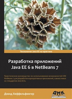 Картинка: Разработка приложений Java EE 6 в NetBeans 7
