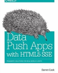 322 грн.| Data Push Apps with HTML5 SSE: Pragmatic Solutions for Real-World Clients 1st Edition